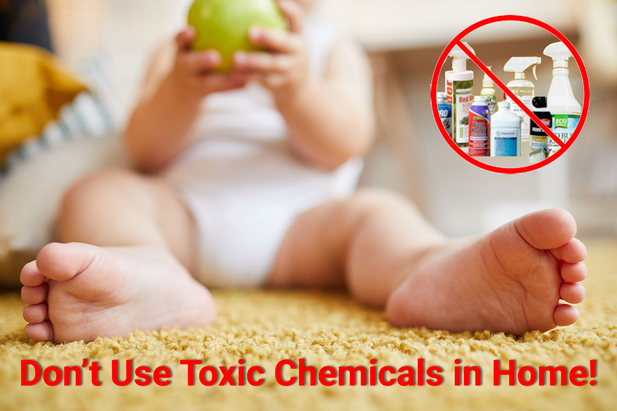 Dont-Toxic-Chemicals-in-Home
