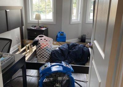 Bed Bug Control Toronto