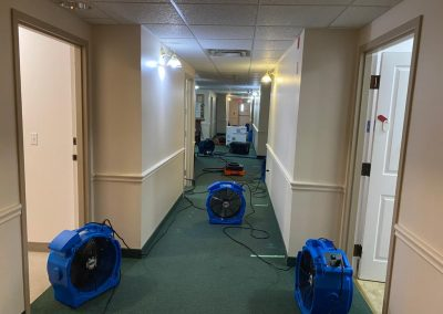 Commercial Bed Bug Heat Treatment Equipment