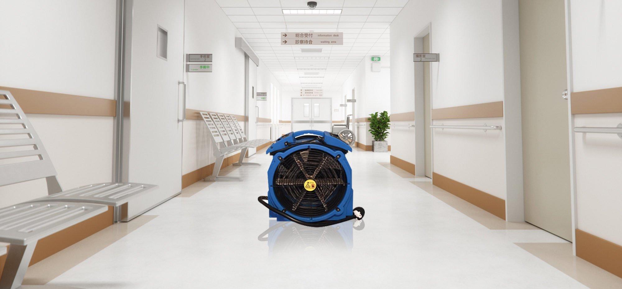 Professional bed bug heat treatment Etobicoke